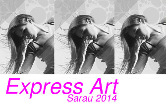 2013 express art noticia